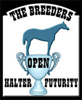 Open at the Breeders Halter Futurity
